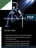 Irrigacion e Inervacion Del Hueso (2)