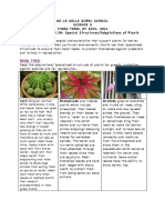 eWorksheet No.3_ Special Structures of Plants