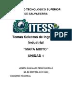 Temas Selectos de Ingeniería Industrial unidad 1