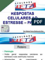 2 Aula_Respostas celulares ao estresse.pdf