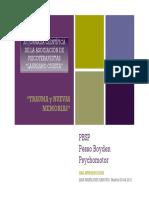 Intro al Pesso Boyden- Trauma y nuevas memorias
