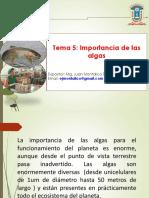 Ficologia clase 5 importancia algas