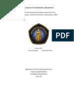195070209111025_ALVIN FITRI HENDIKA TM 5 HDR