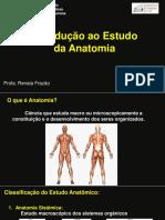Introdução à anatomia 03 2017