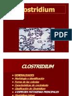 clostridium-091102154524-phpapp02