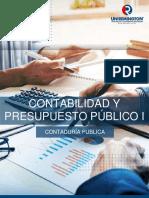 Contabilidad_presupuesto_publico_I_2019