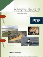 Contaminación lago Junin- Perú