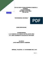 147276209-Asma-Bronquial-Modelo-Virginia-Henderson.docx
