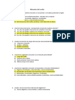 PREGUNTAS MORFOMACRO.docx