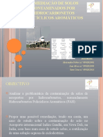 Apresentação_Remediação_PAH'_Final