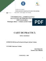 001_Caiet de   prezentat_Master_2019.doc
