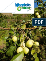 revista-negocio-certo-rural-01 (1).pdf