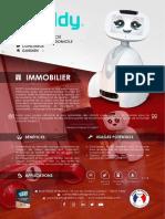Fiche_Produit_BUDDY-REALESTATE_FR