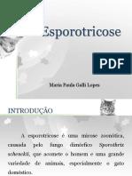 Esporotricose - reunião clinica