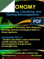taxonomy(microbilogy)