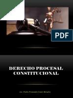 NATURALEZA JURIDICA, OBJETO Y CONTENIDO DEL DPC