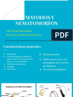 NEMATODOS_NEMATOMORFOS