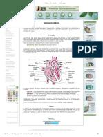 ___ Sistema Circulatório - Só Biologia ___.pdf