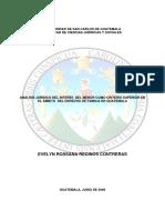 TESIS MENORES.pdf