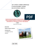 camal de JUNIN ULTIMA EXPOSICION.docx