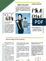 folleto riesgo publico