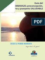 Guía del embarazo, preconcepcion, parto y puerperio saludable