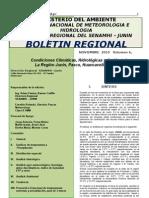Reporte Senamhi Dic2010