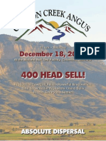 Canyon Creek Angus Dispersal Sale