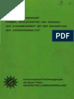 10_polize_jugendamt
