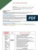 PLAN ANUAL TRIMESTRAL MAMA 2020.docx