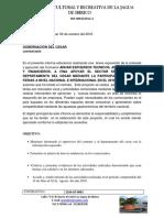 INFORME FERIAS DE LAS COLONIAS