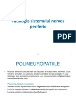 Sistemul nervos periferic 2018  text.pdf