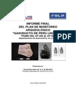 INFORME_FINAL_DEL_PLAN_DE_MONITOREO_ARQU.pdf