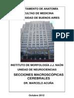 Neuroanatomia seccionante_0