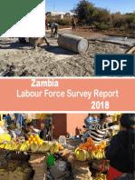 2018 Labour Force Survey Report.pdf