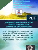 REFLEXIONES.CURRICULARES(PRESENTACION) (1).pptx