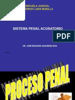 Sistema Penal Acusatorio  Dr Saavedra Roa (1).ppt