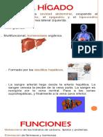 marcadores de la hepatitis