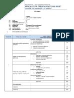 modelo de syllabus2.docx