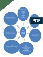 Planul cadru - titularizare Org grafic