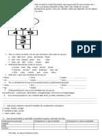 Proiect 1.Anexa 2-șotronul