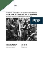 PROYECTO DE MAÍZ 2020.docx