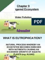 Bio (Water Pollution)