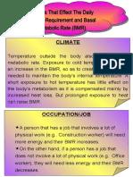 Factors That Affect BMR