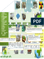 environment-and-problems-vocabulary-activities-promoting-classroom-dynamics-group-form_64882.doc