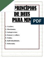 OS PRINCÍPIOS DE DEUS PARA MIM