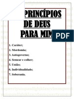 OS PRINCÍPIOS DE DEUS PARA MIM.pdf
