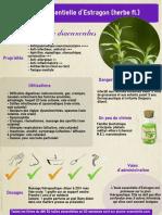ficheHE34estragon.pdf