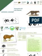 Ficha_Fauna S._Las cruces.pdf