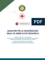 20100716Disostruzione_0.pdf